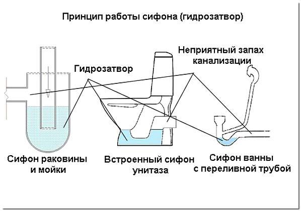 Принцип работы водяного гидрозатвора в сифонах