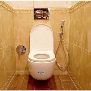 Установка гигиенического душа в туалете : выбор модели смесителя, варианты монтажа